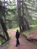 Rainy walk back through the woods