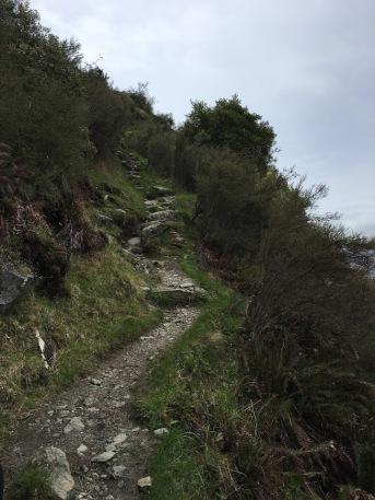 Rocky mountain and Diamond Lake hike