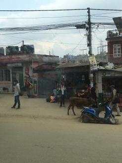 Kathmandu in a nutshell.